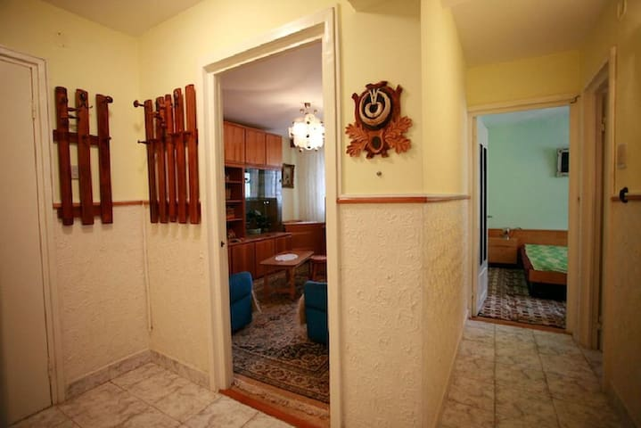 3 room apartment in mountain resort