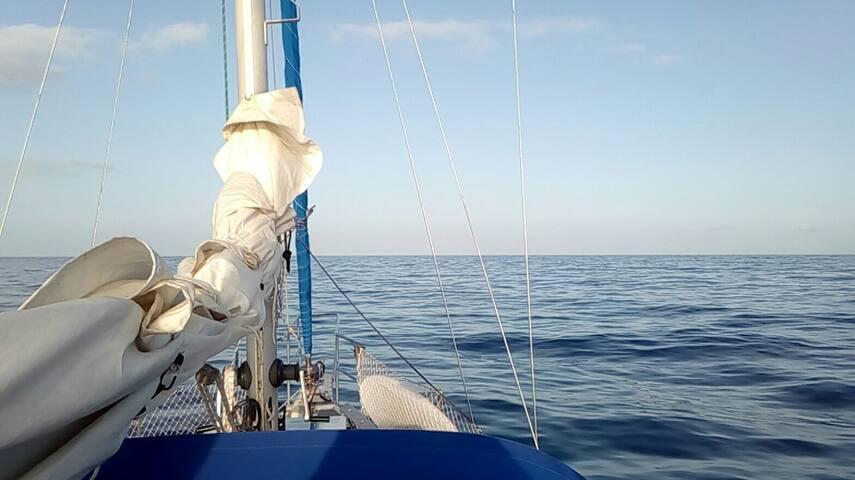 Velero Dadoo - Puerto de la Estaca