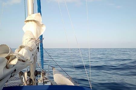 Velero Dadoo - Puerto de la Estaca - Boat