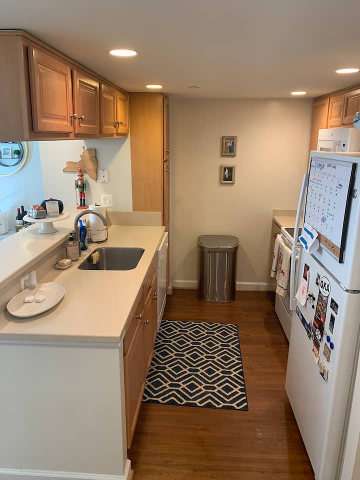 Modern Apartment in  Ballston for Sublet!