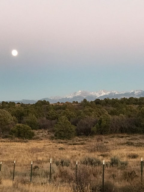 Critter Mountain Ranch
