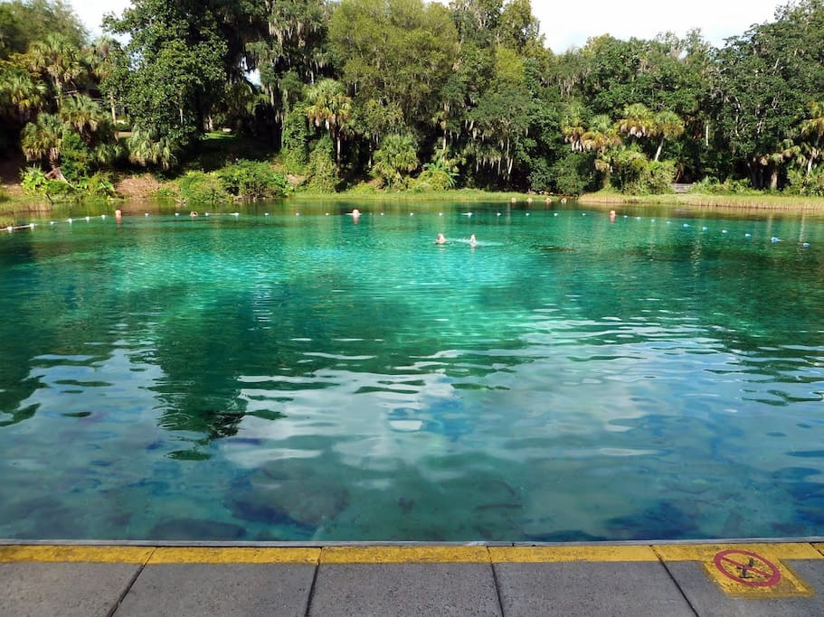 Go swimming at the Rainbow Springs State Park's pool, so breathtaking! It's cool and refreshing, and some say it has healing effects!