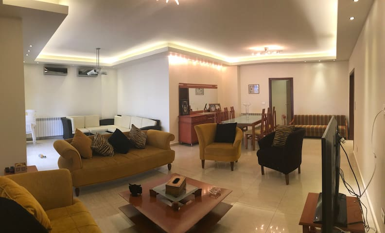 Angelina deluxe apt. with 120 sqm terrace space.