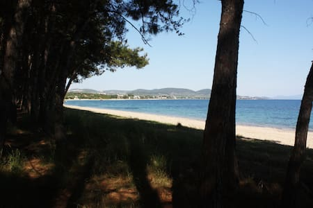 Perfect beach in the heart of Toroneos gulf