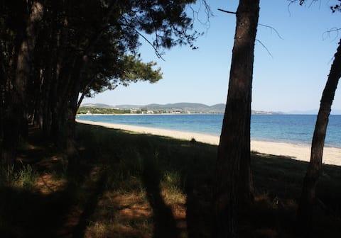 Совршена плажа во срцето на заливот Торонеос