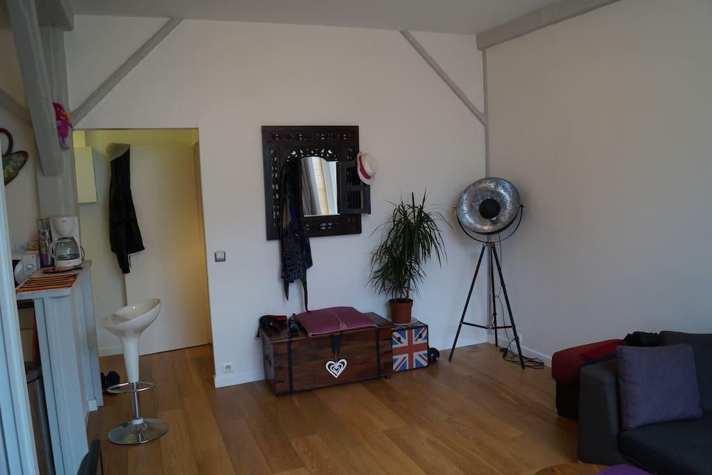 Grand salon spacieux et lumineux