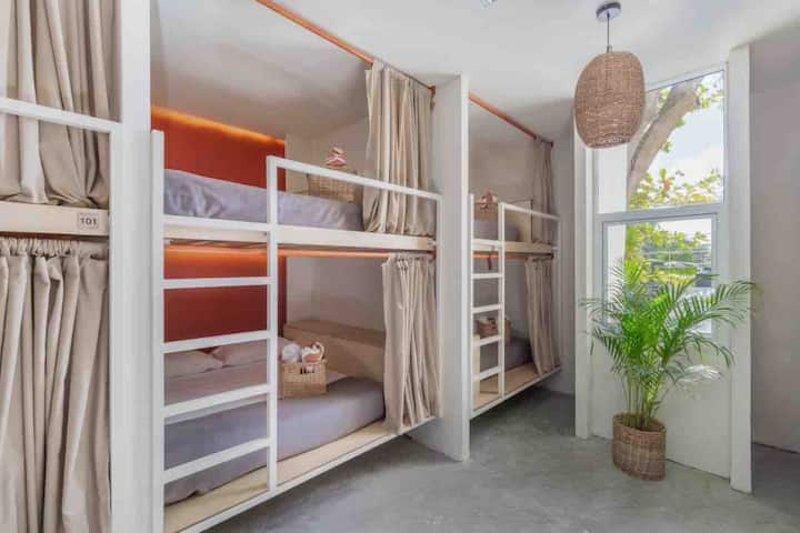 Smart, clean and fashion mix Bunk Beds Downtown