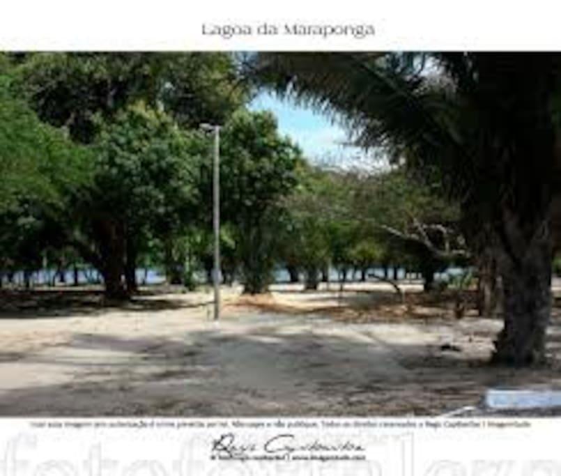 Bairro Maraponga, o bairro verde de Fortaleza