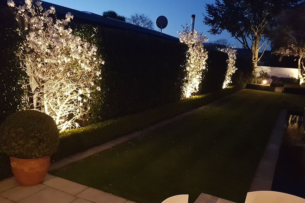 Exterior lights on garden