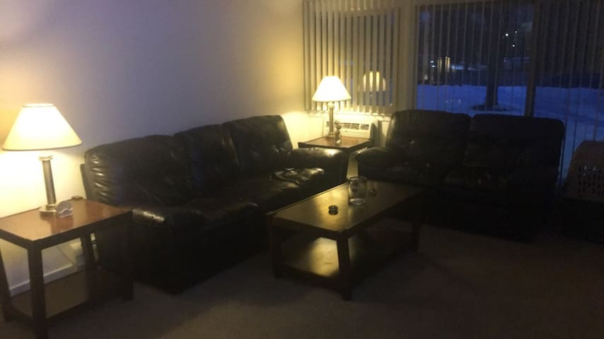Roommate Leaving, need new or guest - Schaumburg - Lägenhet