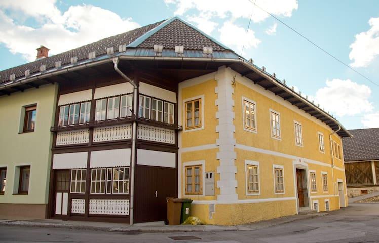 The 1882 Old House Vodnikova