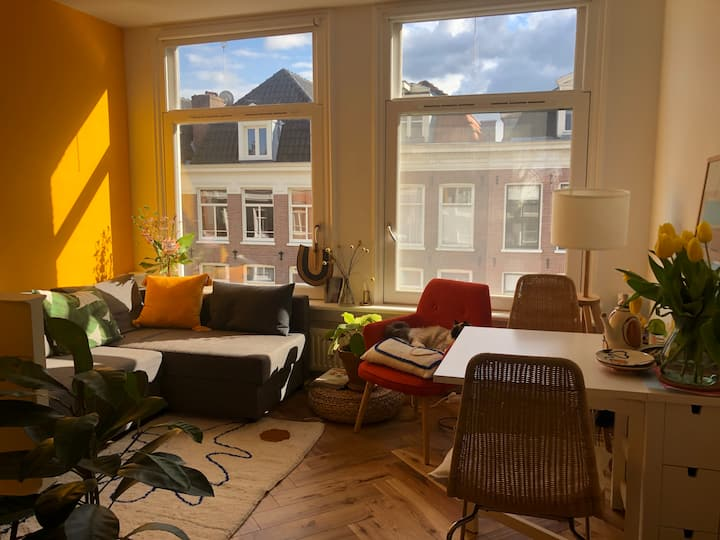 Cosy & bright flat with balcony - central De Pijp
