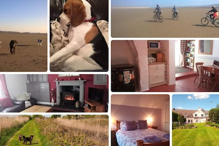 Hafan Bach - Dog friendly cottage in Kidwelly