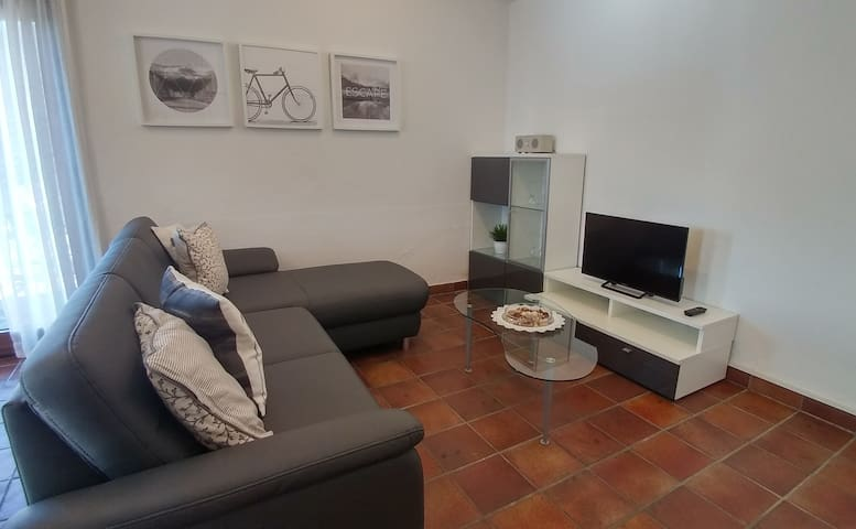 Sitting area with sofa, television and Bluetooth speaker.
