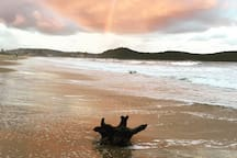 Umina beach sunset