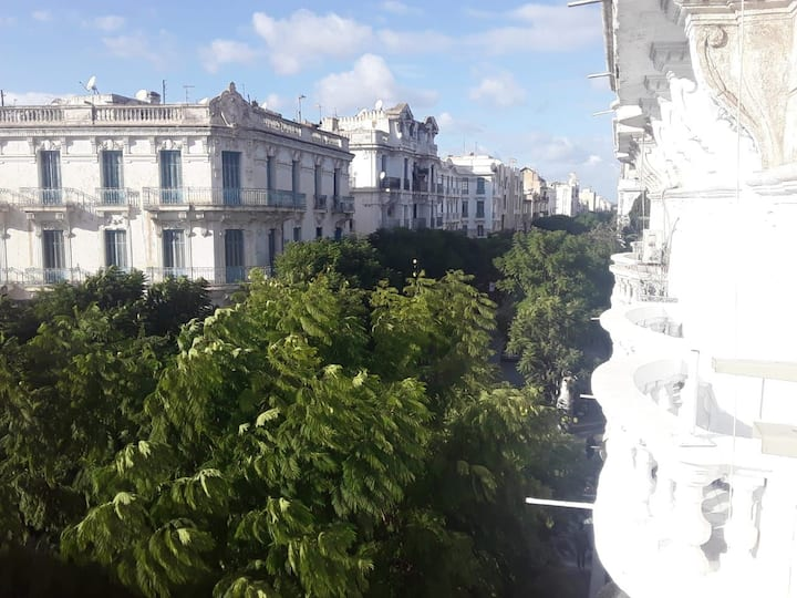Appartement au coeur du centre ville de tunis