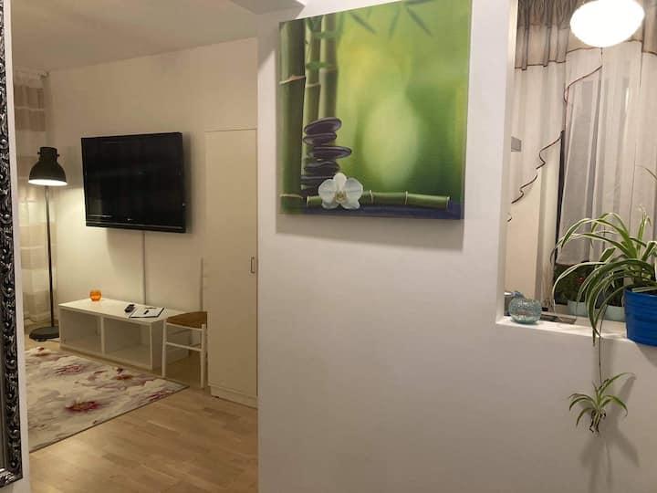 Renthouse Guest Apartment