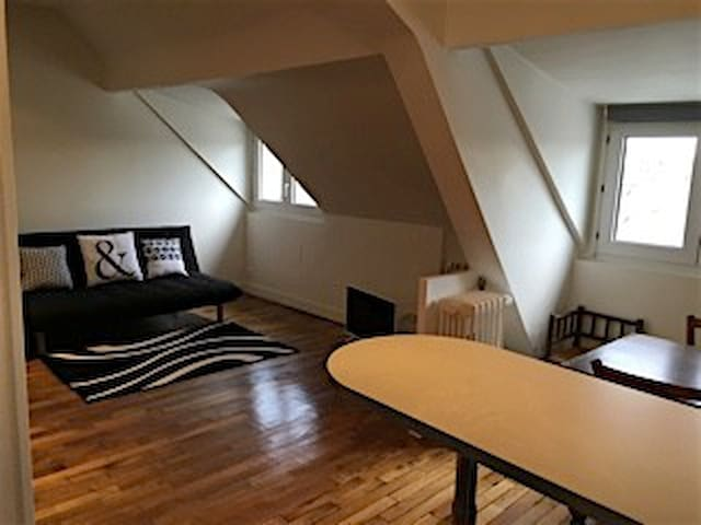 Large and luminous 47m2 flat - Jardin des plantes - Le Mans - Byt