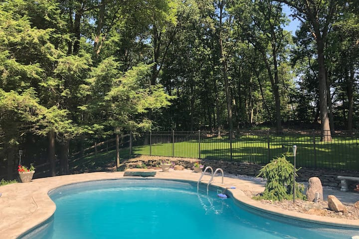 Pool and the yard beyond, leading into the woods