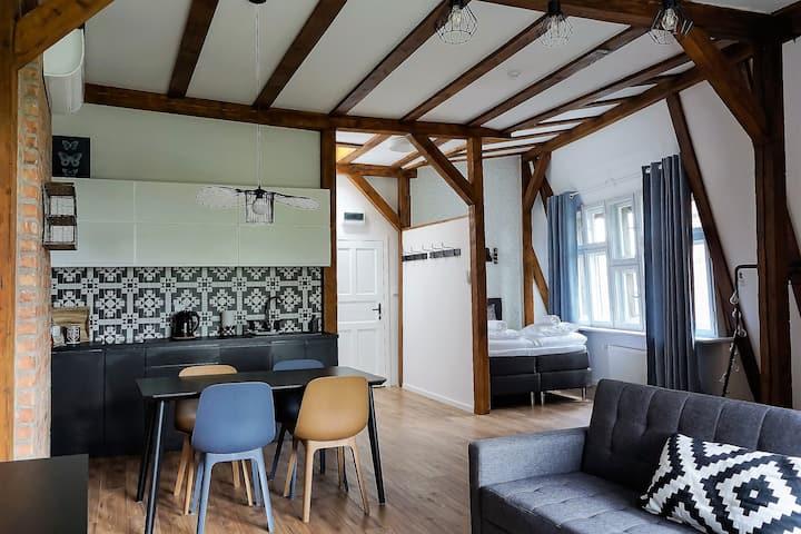 Apartamenty Toruńskie pod Krzywą Wieżą - Studio