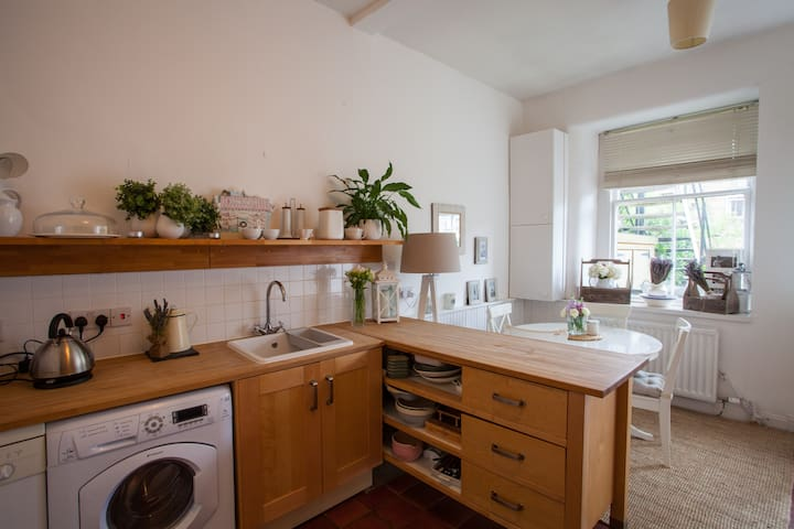 Beautiful 2 Bedroom Flat With Private Garden - Glasgow - Pis