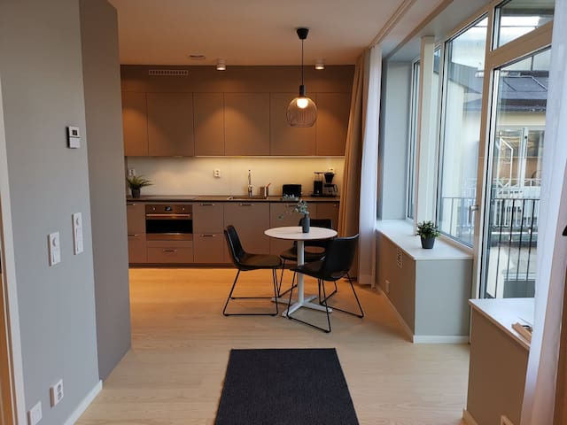 Premium 4 persons Apartment in center of Stockholm
