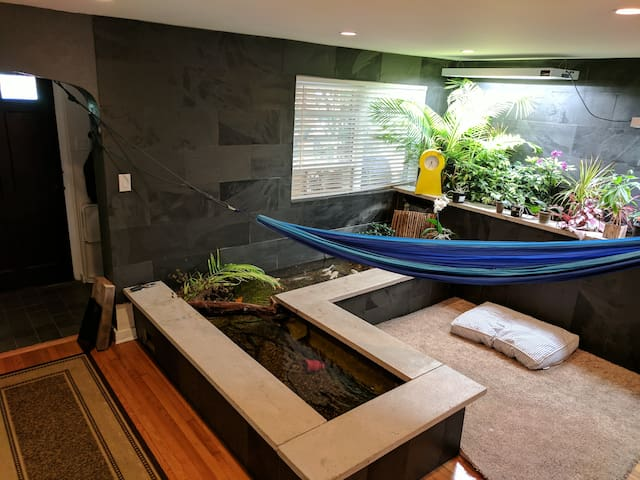 Modern & Mellow: Clean Room in House w/ Koi Pond
