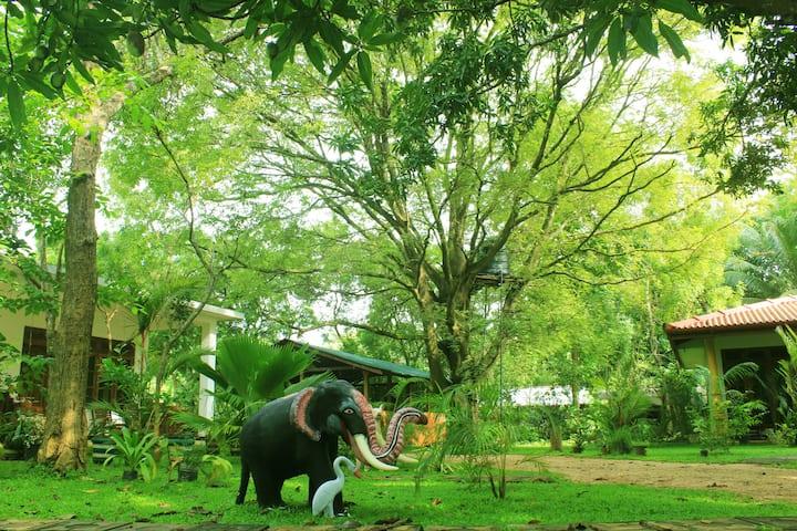 Sigiriya Ranasinghe Nature Villa 03