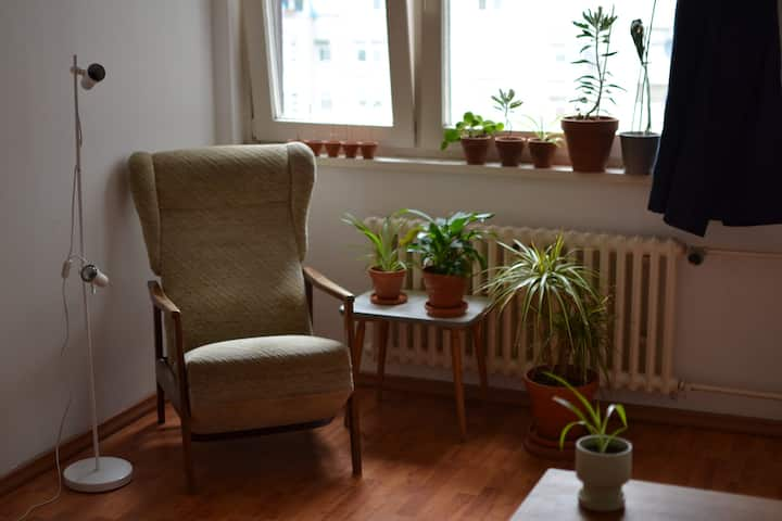 Big room in the heart of Kreuzberg
