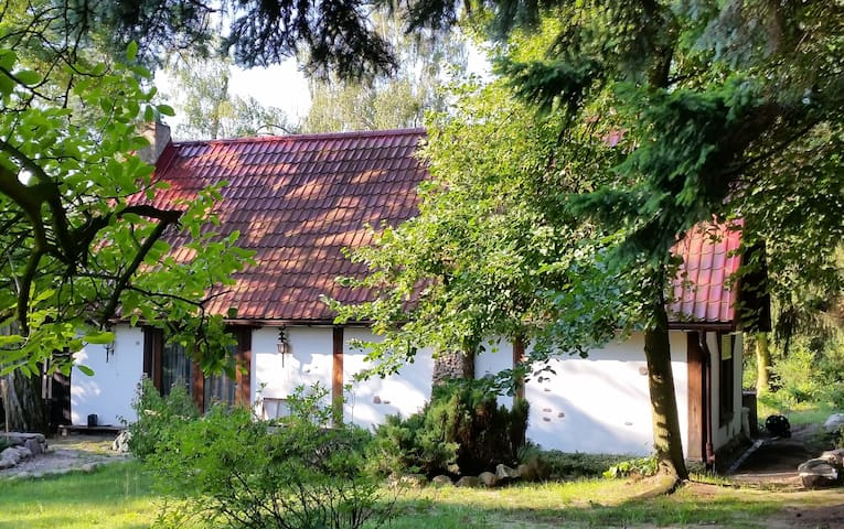 Chillout house - Sniadowko - Błędówko - House