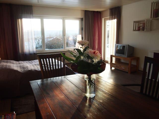 Großzügiges Doppelzimmer mit Garten - Maulbronn - Appartement