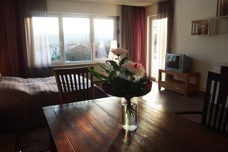 Großzügiges Doppelzimmer mit Garten - Maulbronn - Apartamento