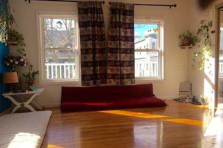 Sunny Spot in Somerville! - Somerville
