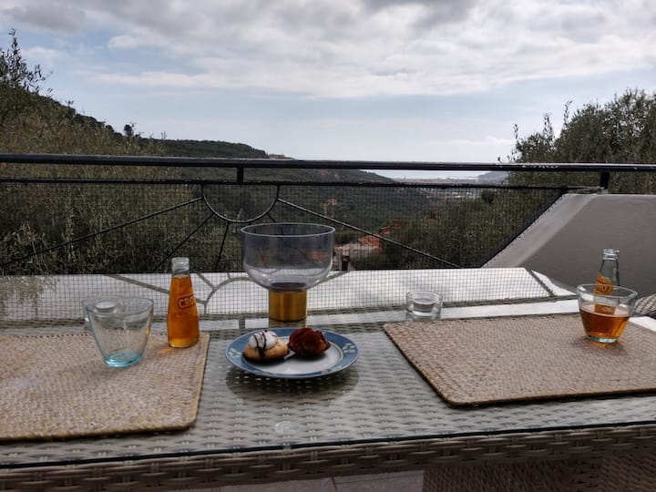 Ca Gianca 2. Idyllic, well furnished apartment located on quiet a slope within an olive-grove