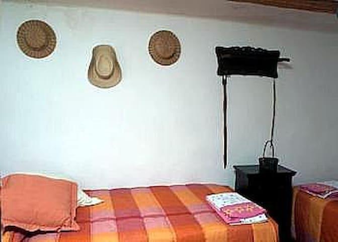 Puebla de San Miguel - Pino Albar