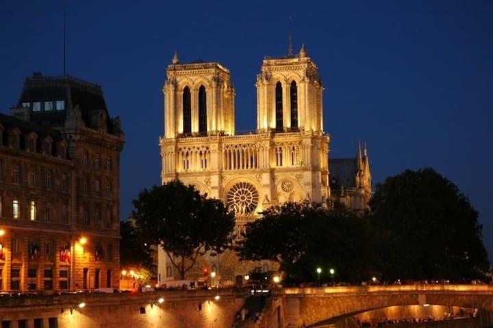 NOTRE DAME,LE LOUVRE,SAINT-MICHEL.. - Paris