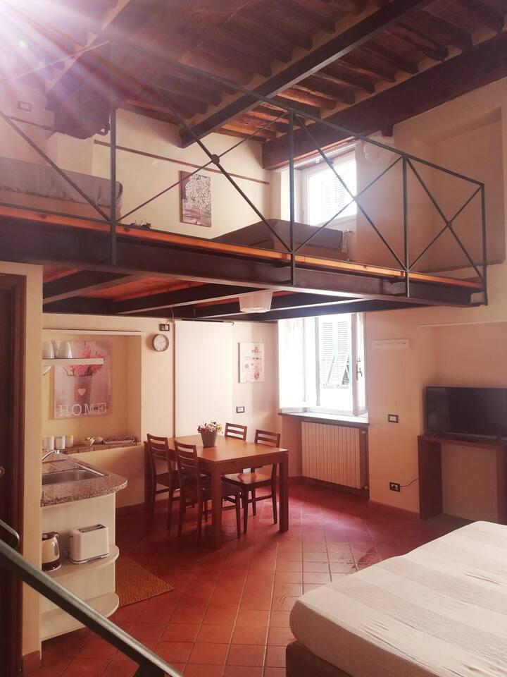 Vista loft