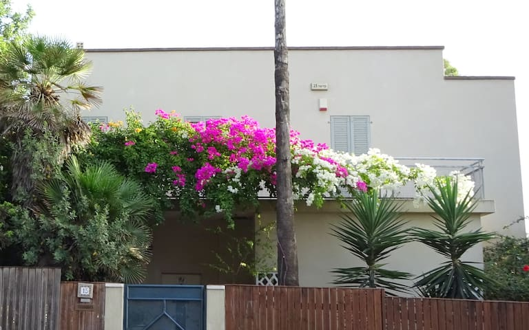 Private garden unit, Centre of the Carmel