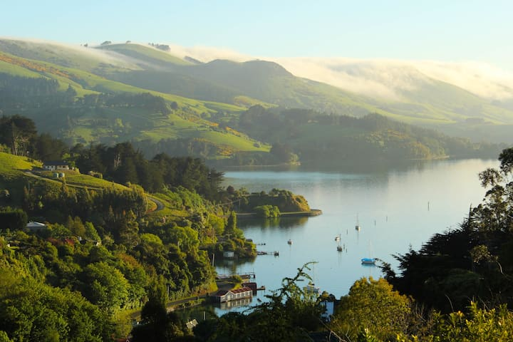 Stunning Views, Wildlife, Tranquil Retreat - Port Chalmers - Bed & Breakfast