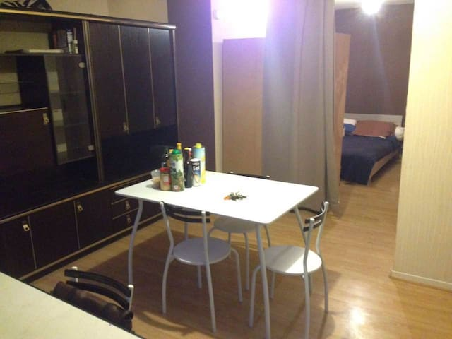 THE appartement à Roanne - Roanne - Wohnung