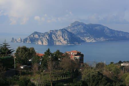Villa Starace Suite - Termini