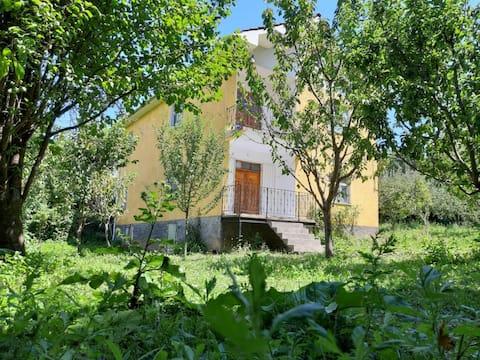 Zerqani Guest House