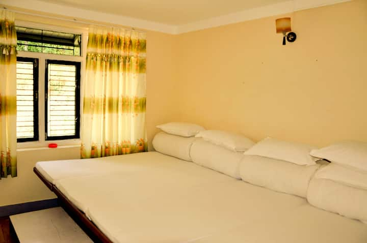 Hotel Mount Paradise  (4 Beds 'Room)