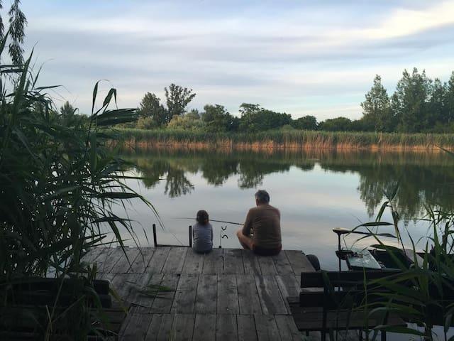 Közvetlen vízparti nyaraló, privát partszakasz - Szolnok - House