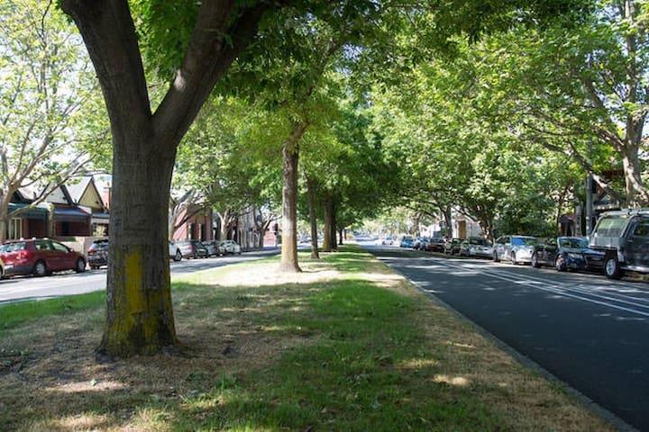 treelined boulervard in front of thê property
