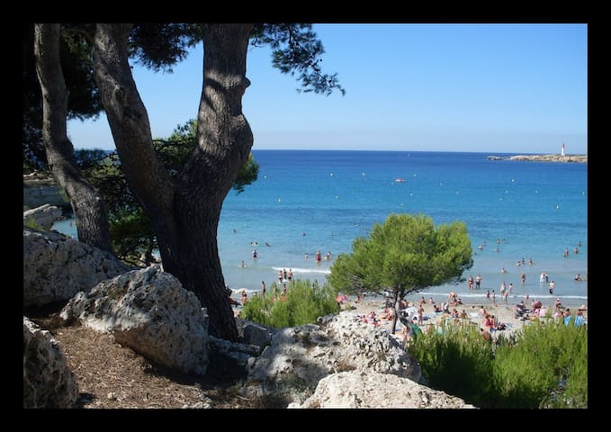Location bord de Mer COTE BLEUE plage sable fin