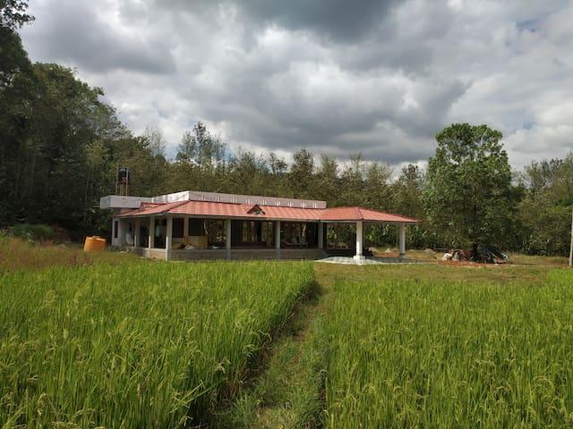 Meadow side Homestay