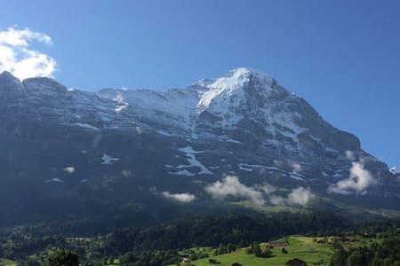Grindelwald Top/Europe, Eiger views - Grindelwald - Apartment