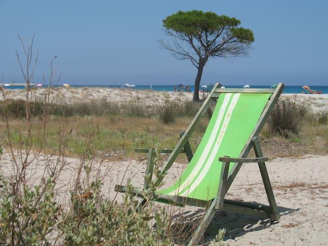 Tra Mare e Storia  with Seaview