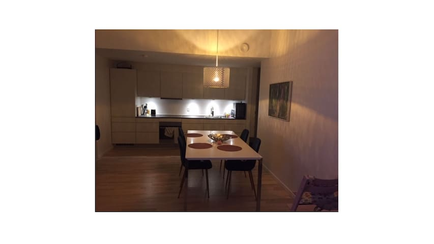 Newly built modern 2 bedroom apartment